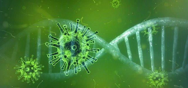 Vereins-Massnahmen Coronavirus